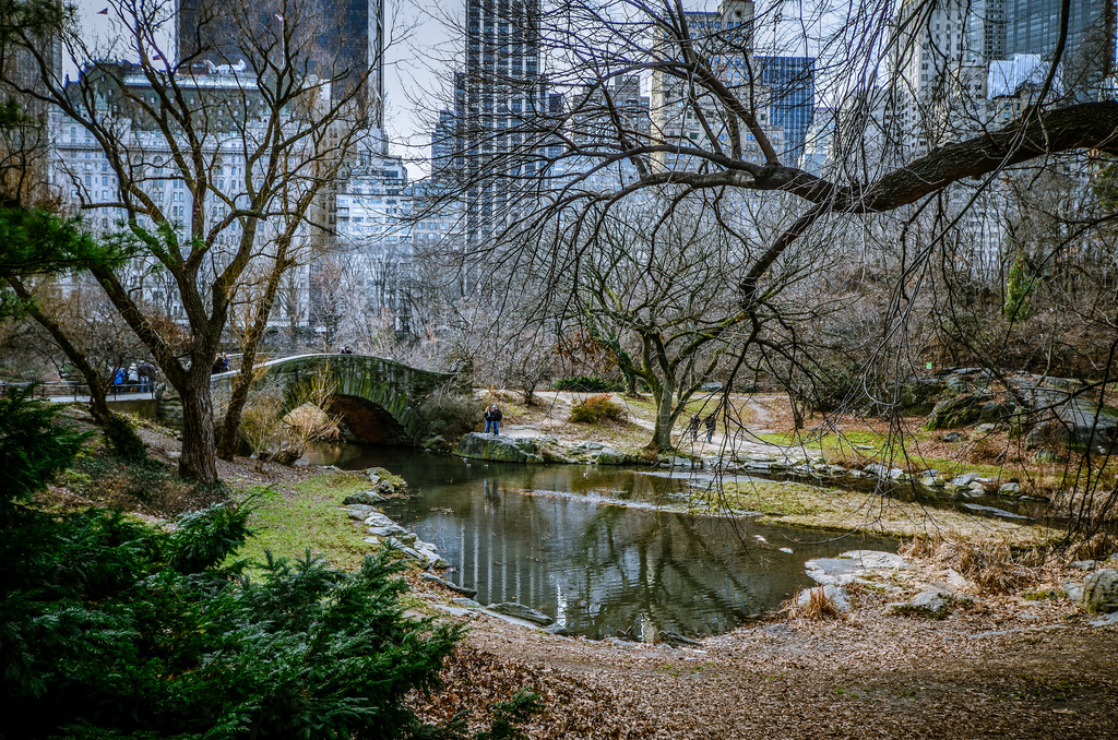 Fietsen Central Park New York